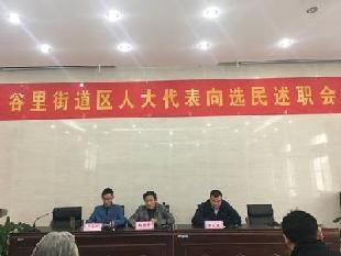 谷里街道人大工委组织开展人大代表向选民述职评议会