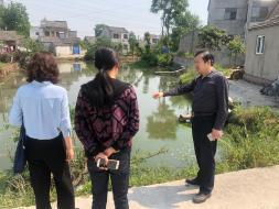 湖熟街道人大工委视察街道内水体治理情况